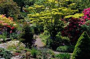 Branklyn Gardens
