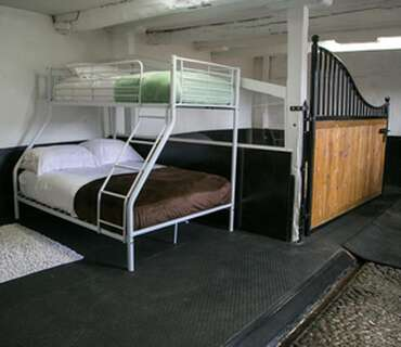 Stable Stay with horse 1 Adult