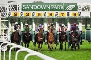 Sandown Racecourse and Exhibition Centre