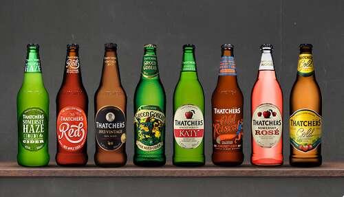 Thatchers Somerset Cider Tours