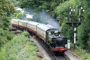 The Steam Trains from Paignton
