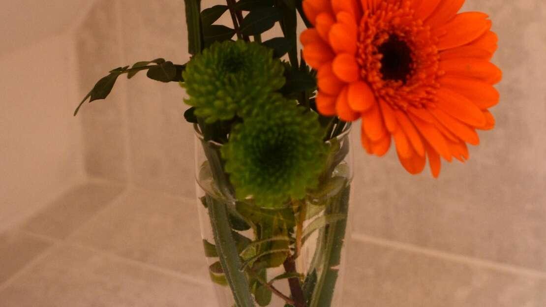 Flower.JPG_1517345636