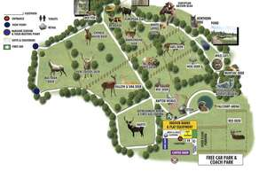 The Scottish Deer Centre, Cupar, Fife
